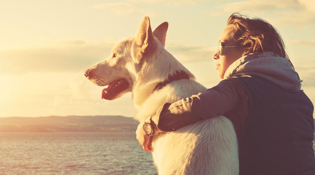【仲良しには理由があった!】科学が証明した、犬と人間3つの共通点