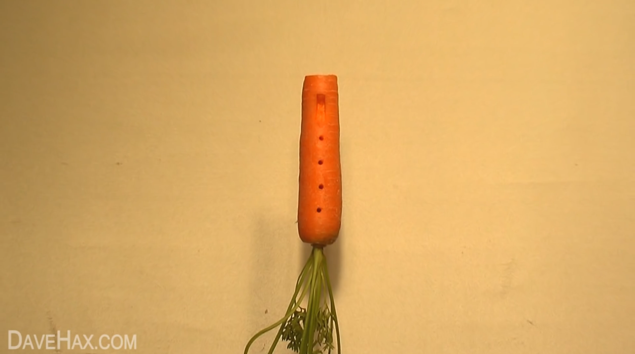 carrot-recorder-1