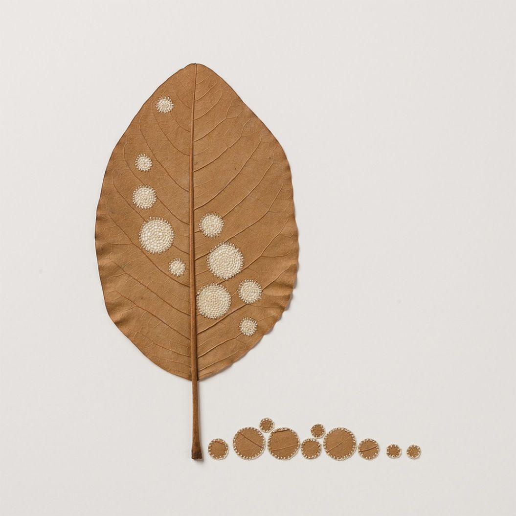 85singo_leaf-7
