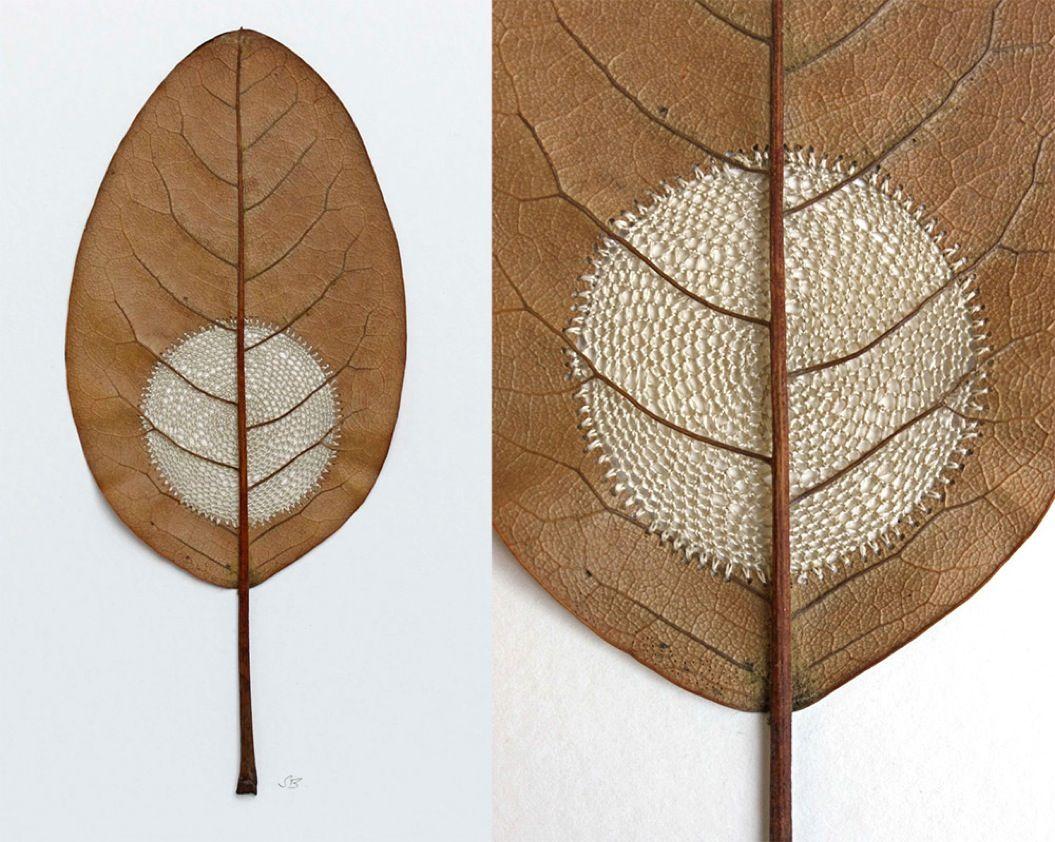 85singo_leaf-8