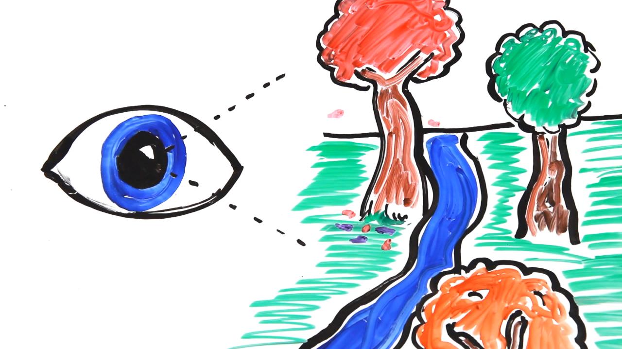 trust-eyes-9
