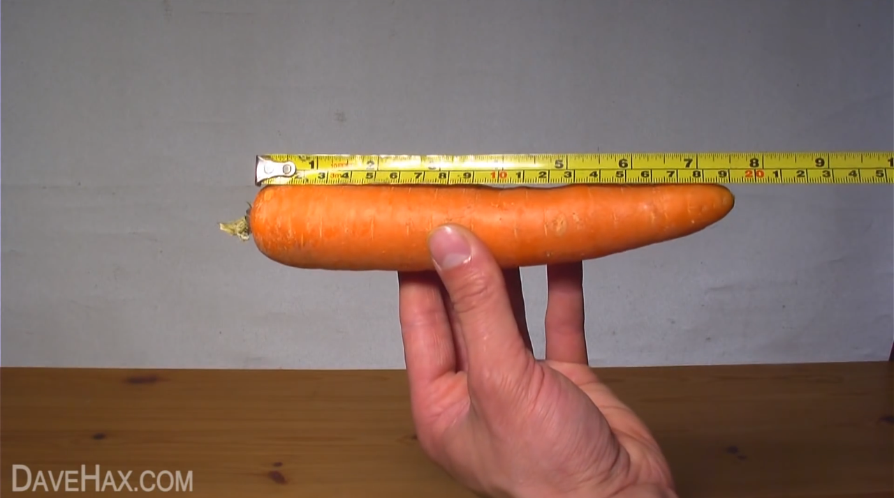 carrot-recorder-2