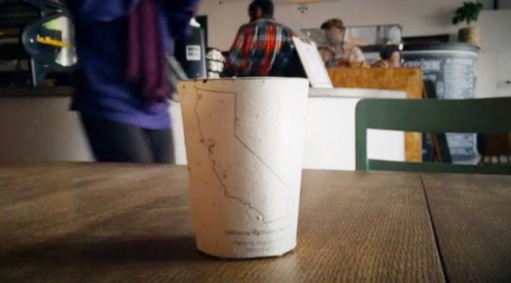 150725_coffee-cup_02