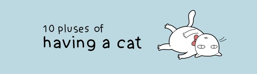 benefit-cat-1