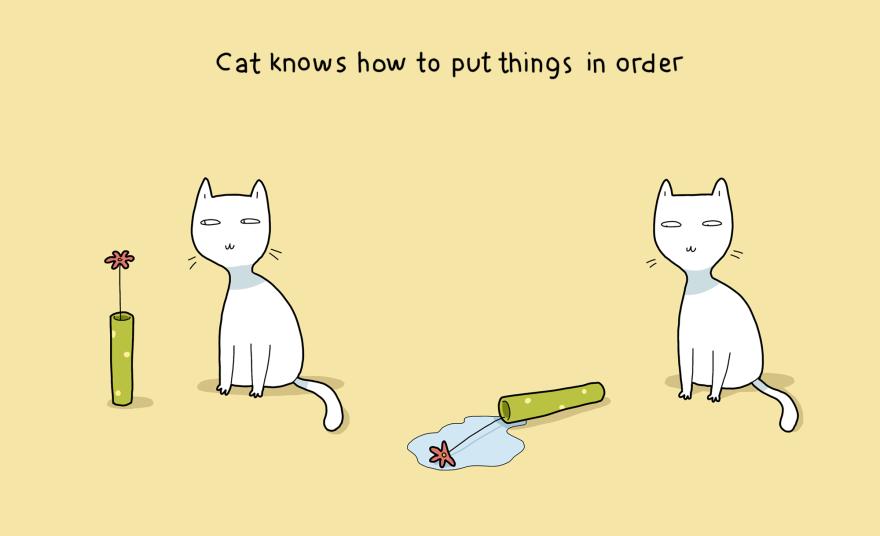 benefit-cat-4