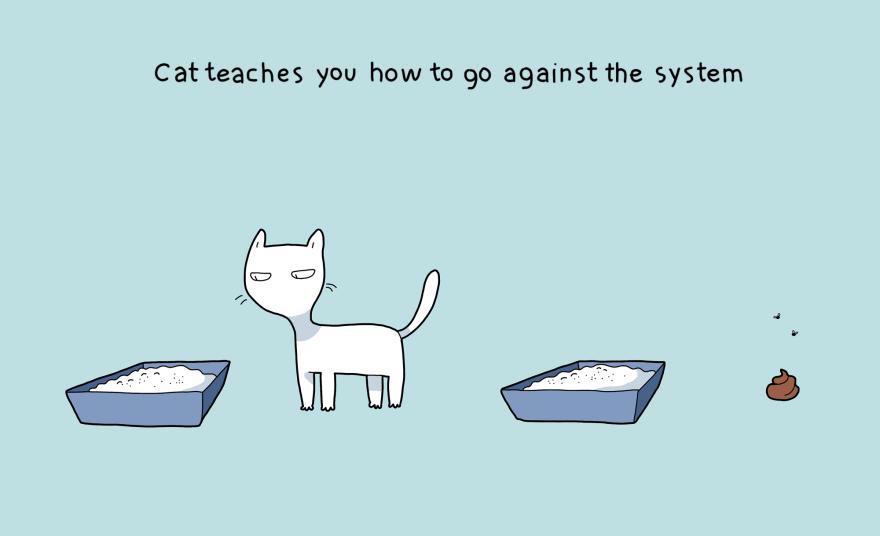benefit-cat-5