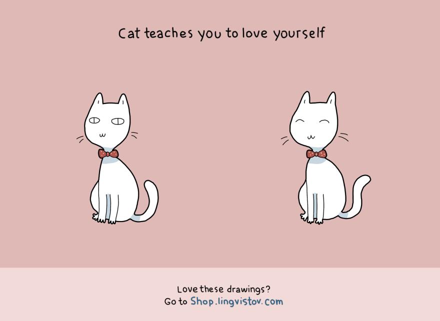 benefit-cat--11