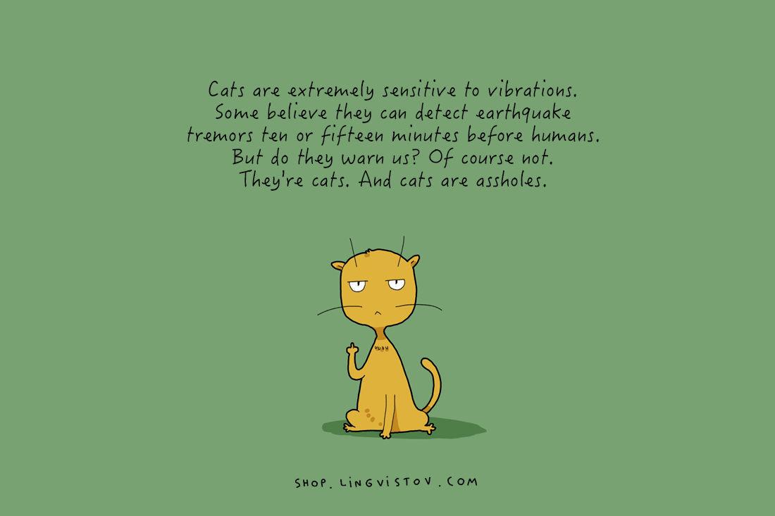 cat-doodles-012