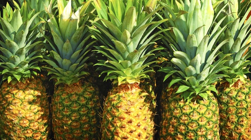 pineapple in market