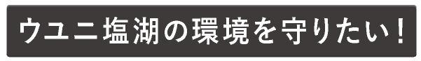 uyuni-clean150907-01-1-1_06