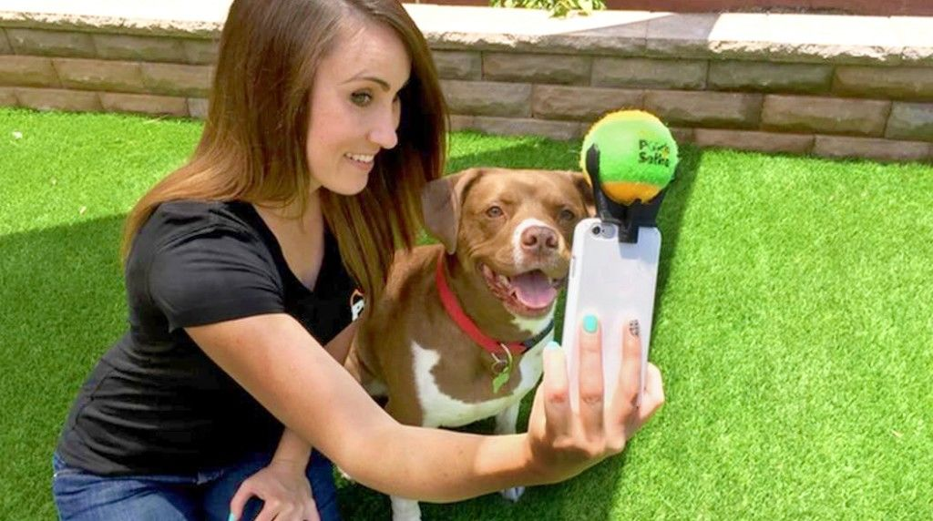 15010-01dog-selfie