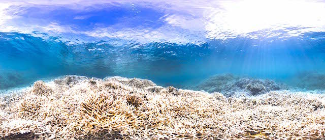 American-Samoa-2-February-2015
