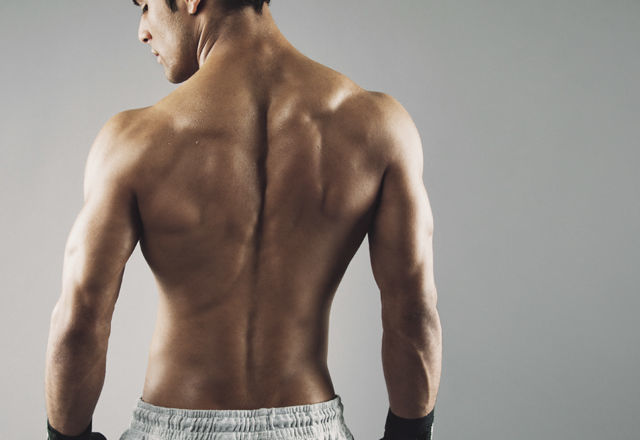 Rear view of strong young male boxer