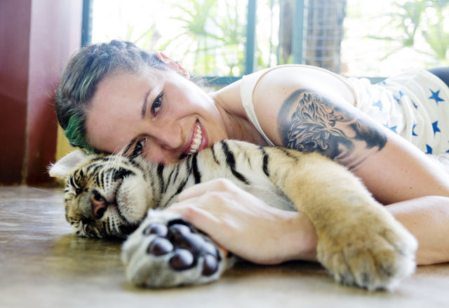 Petting a Baby Tiger