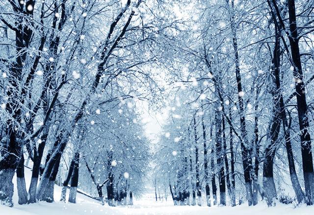 「雪」の画像検索結果