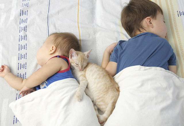 Children and pet sleeping together