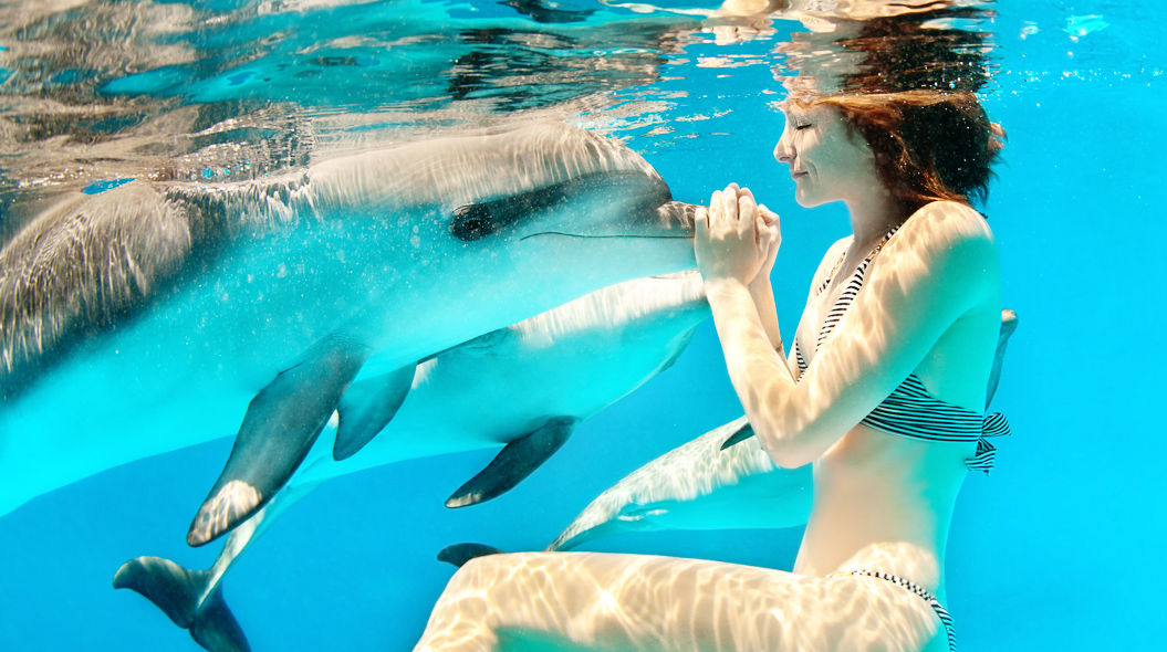 【夢占い】イルカが夢に出てきた!一緒に泳ぐ夢は人間関係がうまくいっている兆し!?