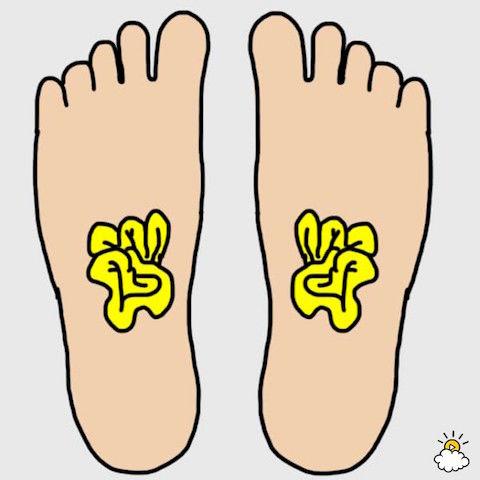 foot003