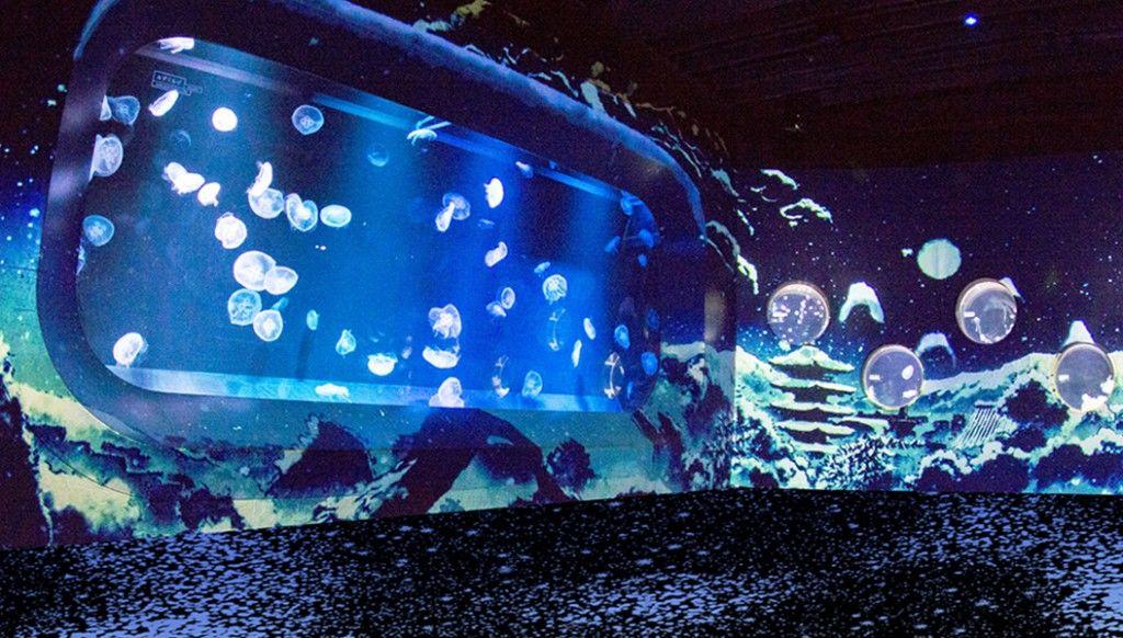 jellyfishinkyoto160105-011