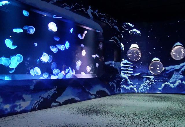 jellyfishinkyoto160105-02