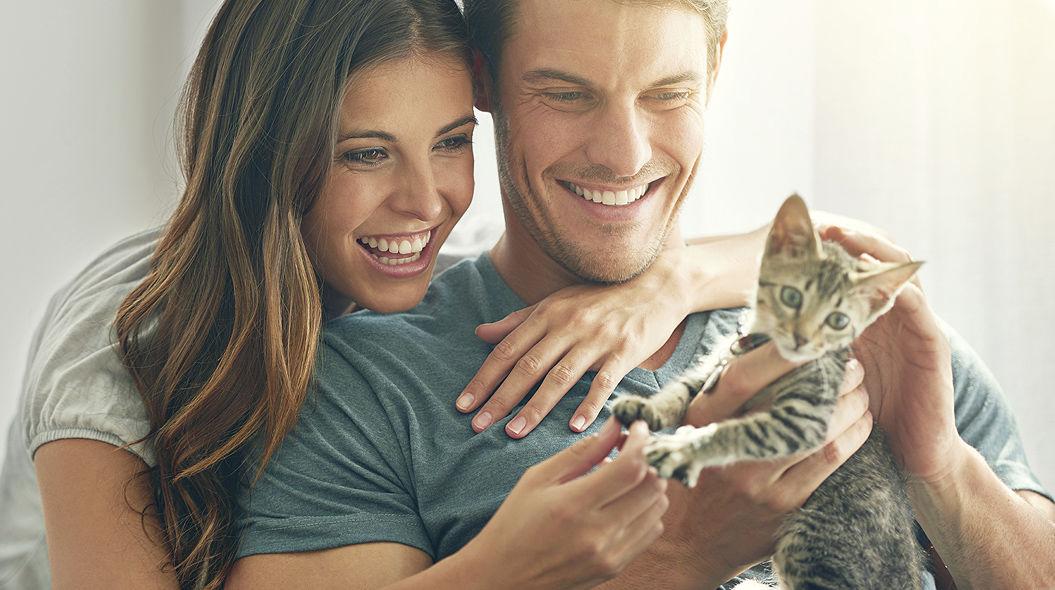 ネコ好きの男性と付き合うべき「8つの理由」