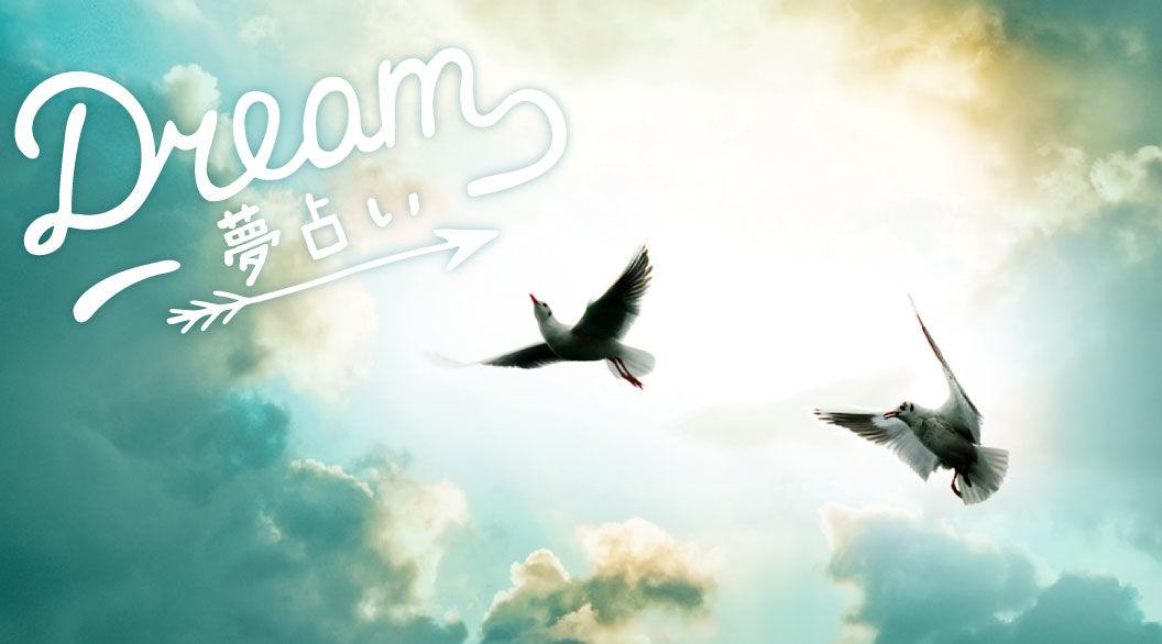 夢に「鳥」が出てきたことはありますか?白い鳥は・・・