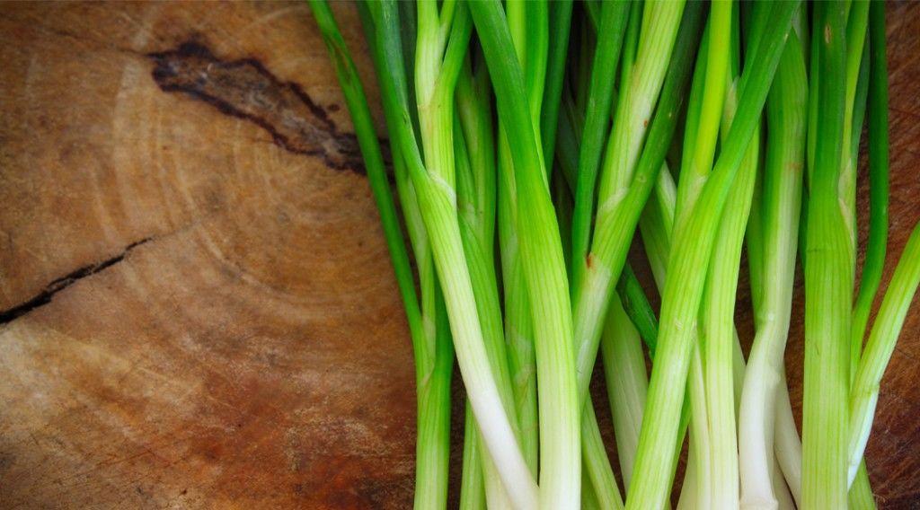 onions-blue-part_156712598