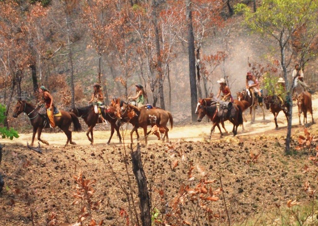 horsecarvan