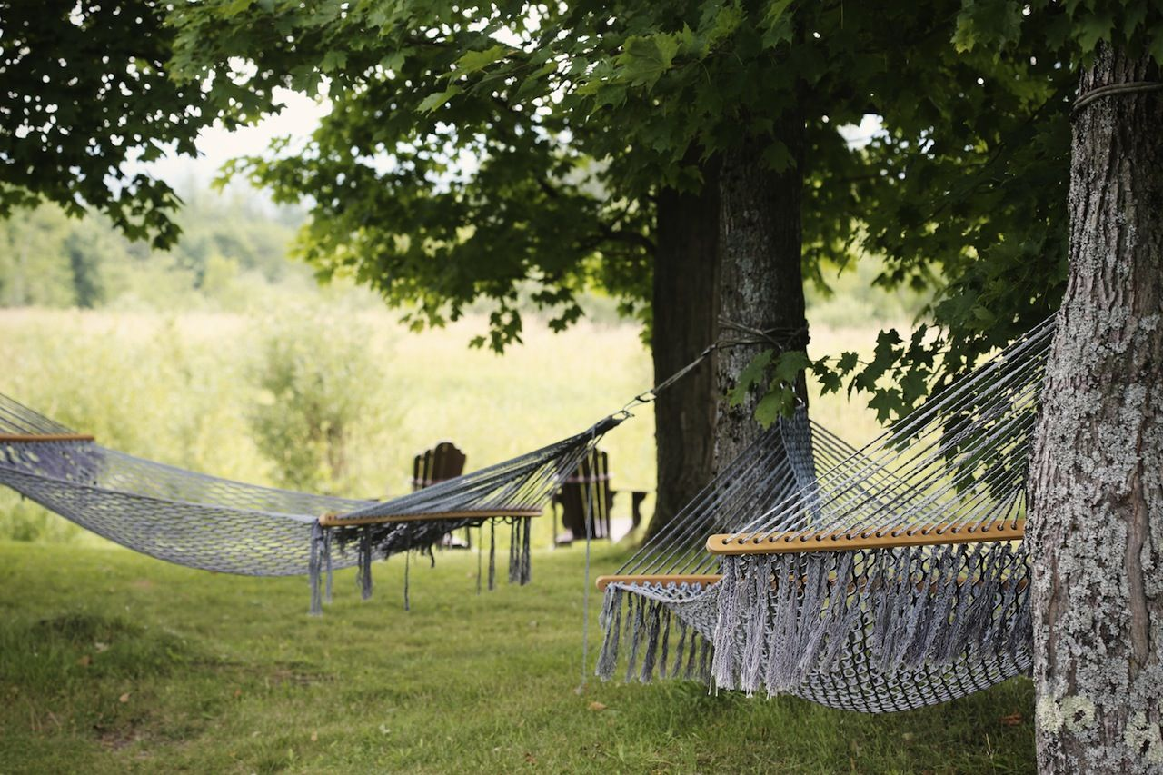 2014-08-life-of-pix-free-stock-photos-Countryside-trees-hammock-chill-Relaxation (1)