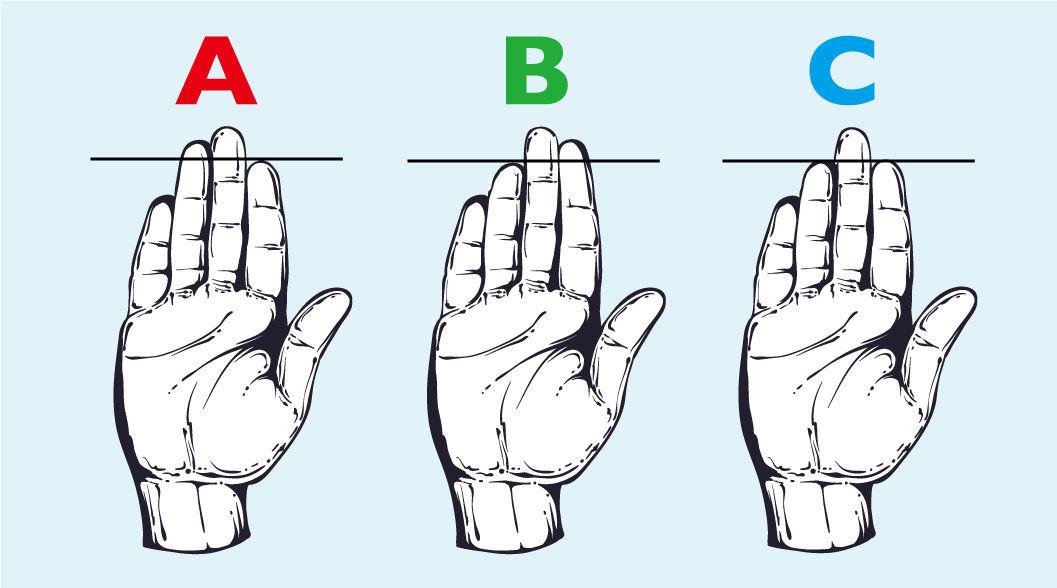 アメリカで「当たる!」と話題の性格診断。方法は指の長さをチェックするだけ!? | TABI LABO