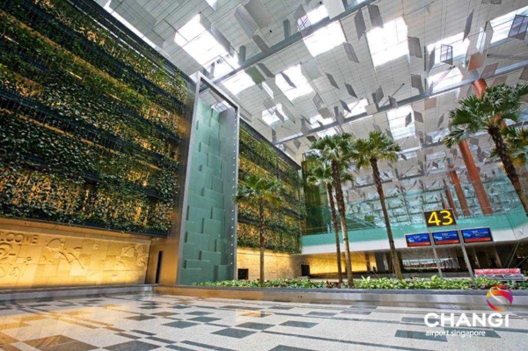 85singo_Terminal-3-Transit-Green-Wall