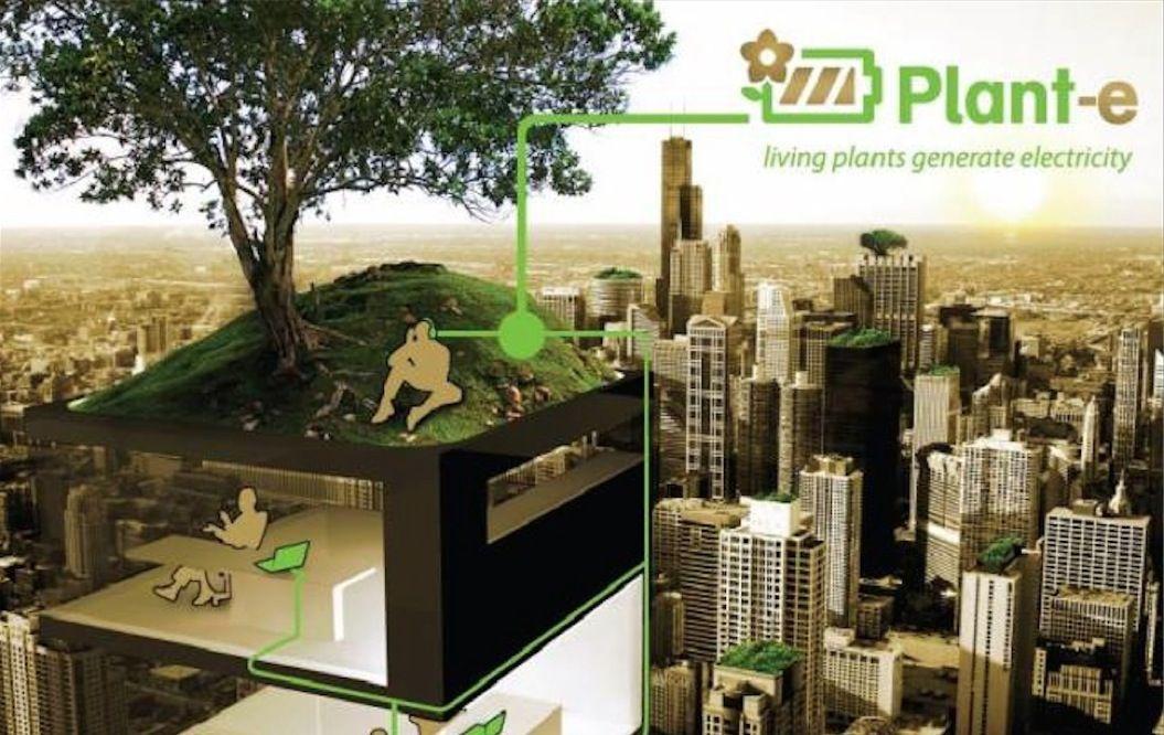 植物から電力を生み出す「新しい自然エネルギー」