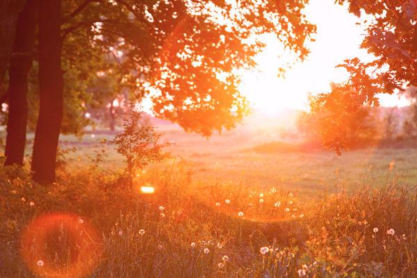 morning_07