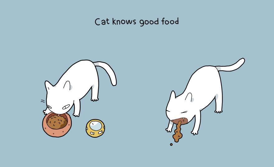 benefit-cat-8