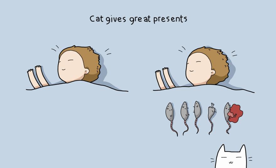 benefit-cat-9