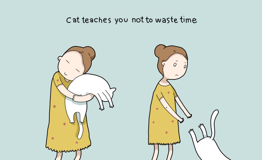 benefit-cat-10