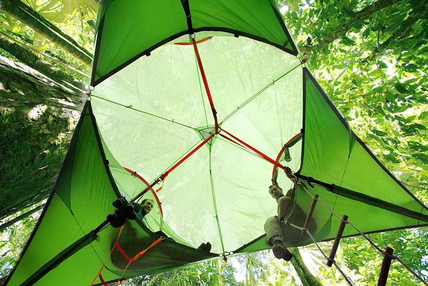 tree-tent-5