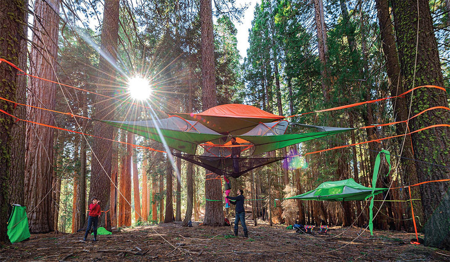 tree-tents-hammocks-camping-shelter-tensile-tentsile-7