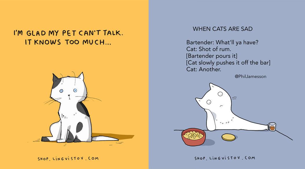 cat-doodles-011