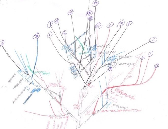 Tree6-ba7360151c377dfb1ec0f3443df01b19