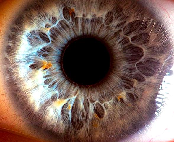 CG加工一切なし!人間の眼球を撮影したら、とんでもないことに ...