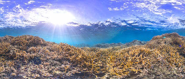 American-Samoa-1-December-2014