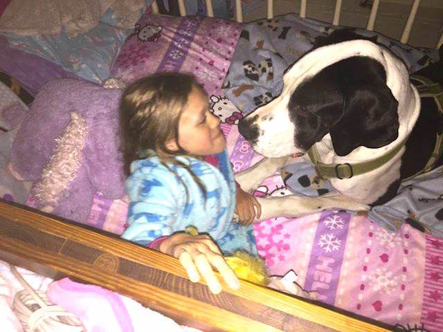bella_and_george_bedtime_28fa18aaafd40f6da11111300b56e80d.today-inline-large2x